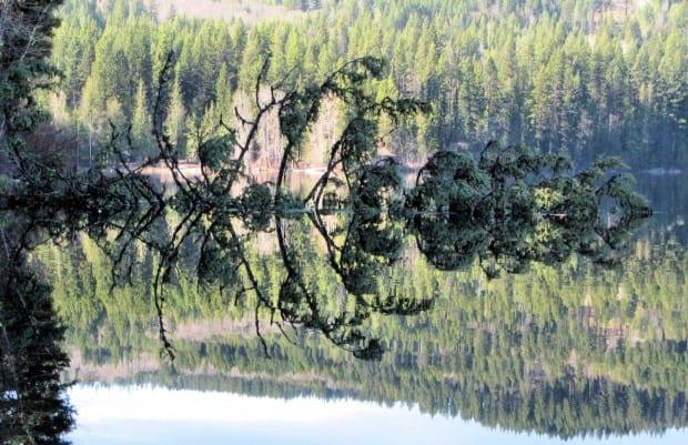 Heffley Lake Paddle 006r