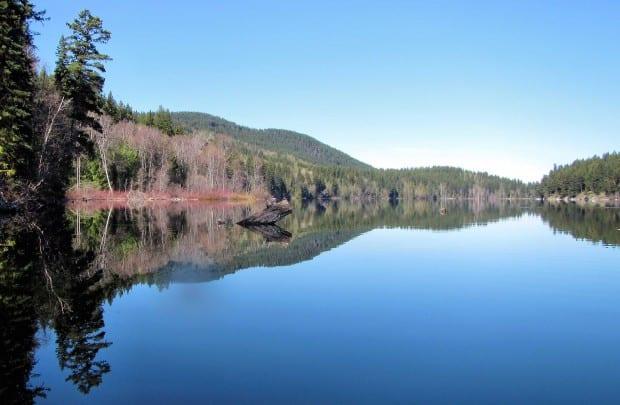 Heffley Lake Paddle 013br