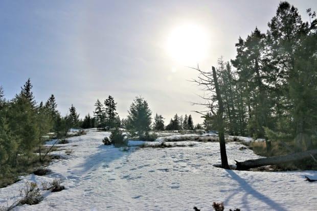 snowy meadows on top of Mara