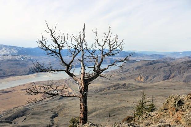 views to Kamloops Lake