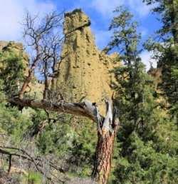 Mara Canyon 006r