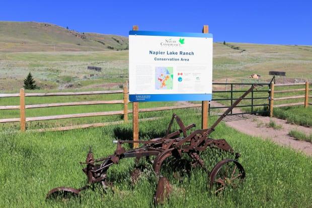 Napier Ranch 001r