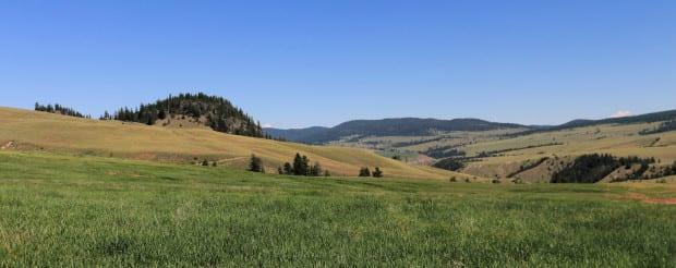 Napier Ranch 053r