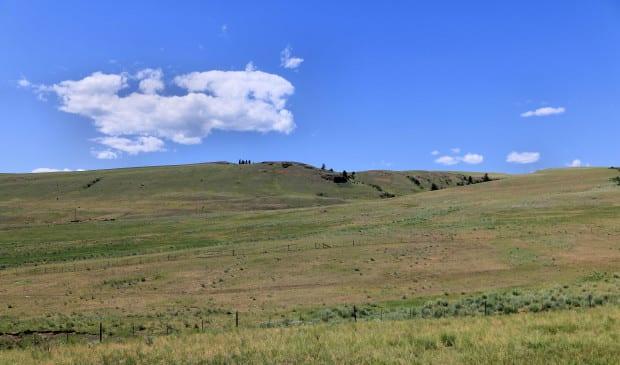 Napier Ranch 055r