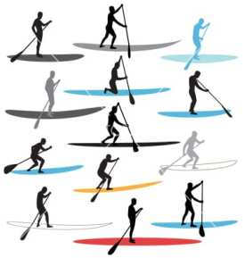 stand-up-paddle-boarding-sup-vector-527638