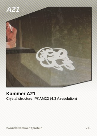 KammerCardA21 (preview)