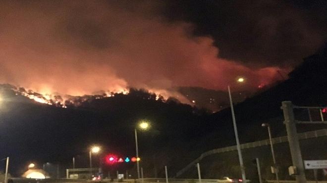 Trabzon'un Sürmene ilçesi Çamburnu mevkiinde büyük yangın