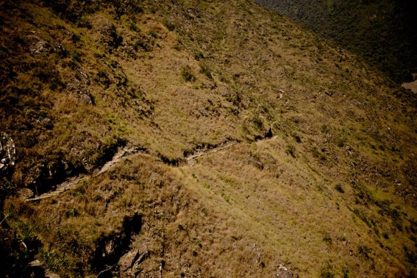 Amazing Peru Kandise Brown