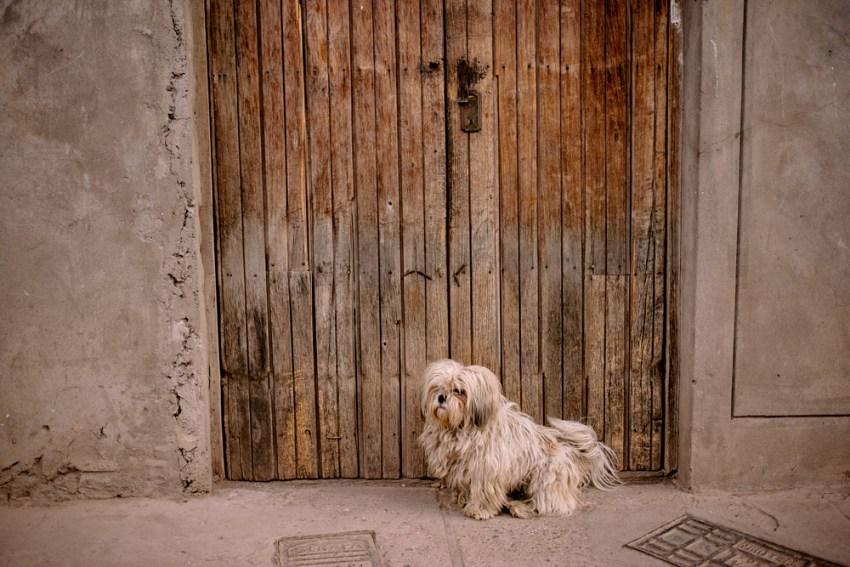 Inca Trail Machu Picchu Cusco Peru Kandise Brown Photographer