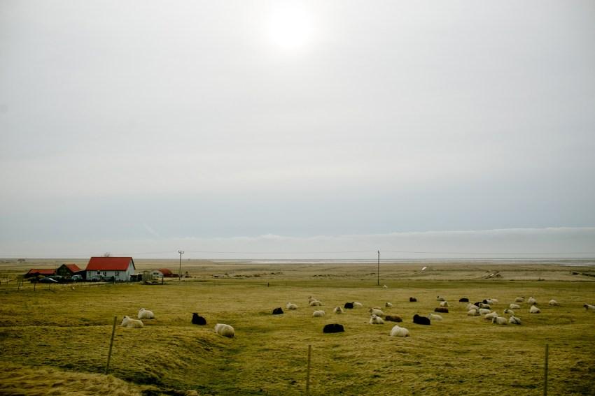 094-awesome-iceland-landscape-photography-kandisebrown2016