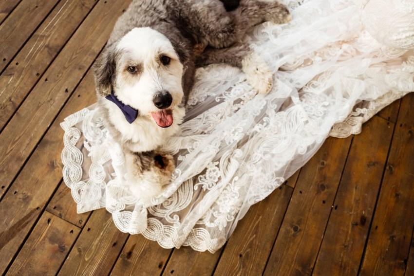 ticklebelly-hill-weddings-photos-kandise-brown-aj2018-42