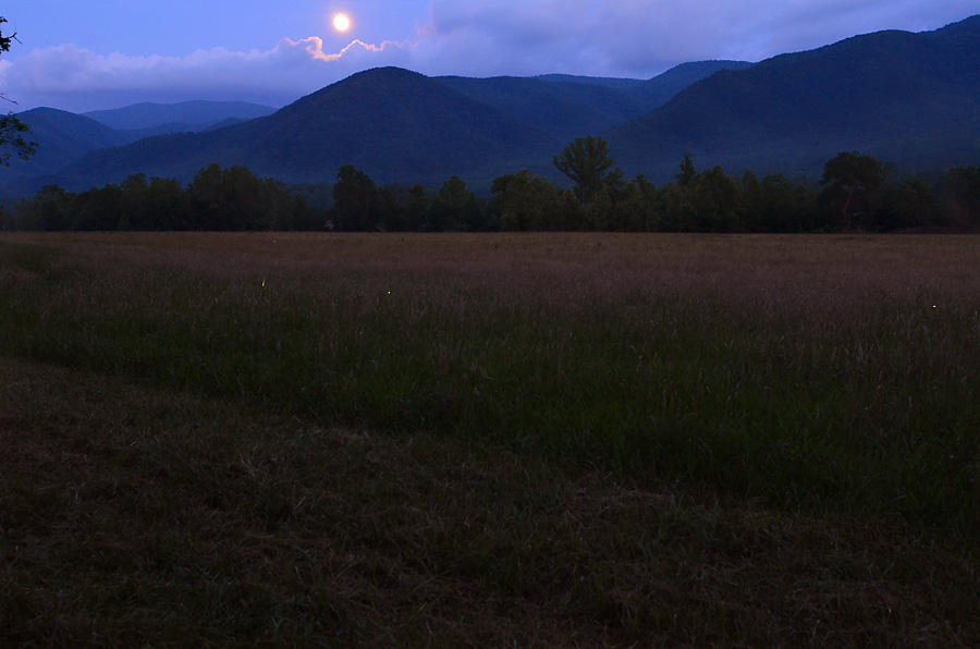 Cades-Cove-by-Moonlight