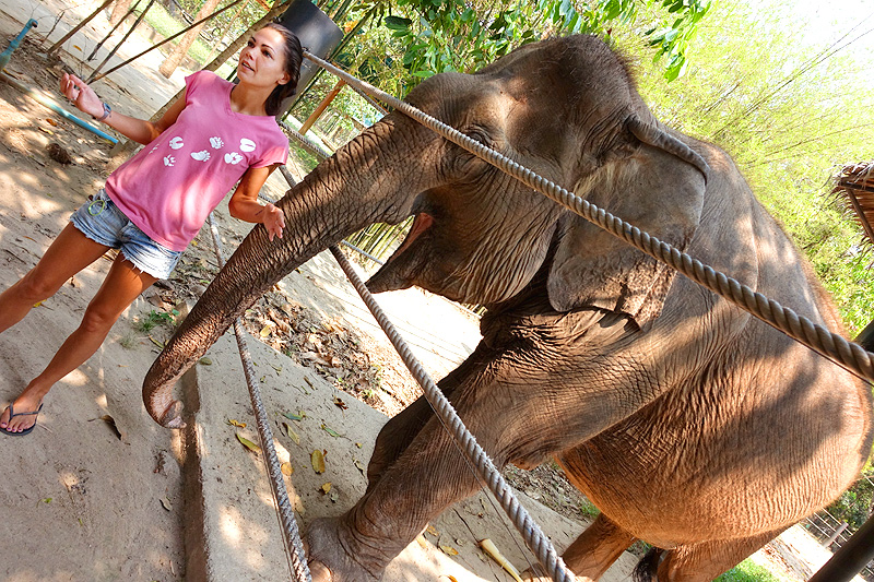 Thailand-WFFT-Tanya-Guide-Bunmi-Elephant-01
