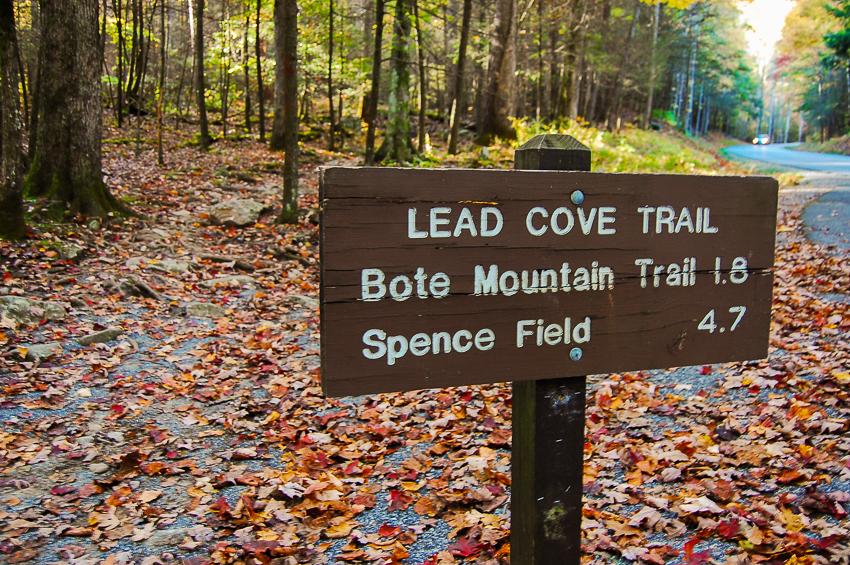 lead-cove-bote-mountain-trailhead