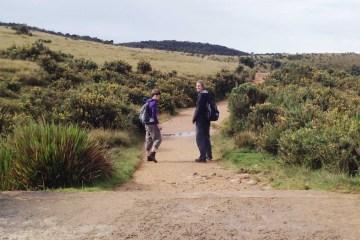 Nuwara Eliya & Horton Plains National Park Tour