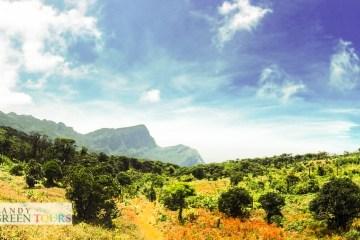 Kandy green tours - tour01-141