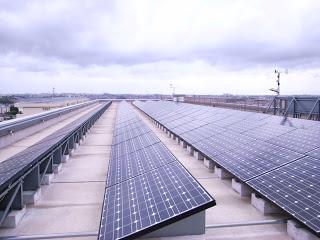 屋上に並ぶ太陽光パネル
