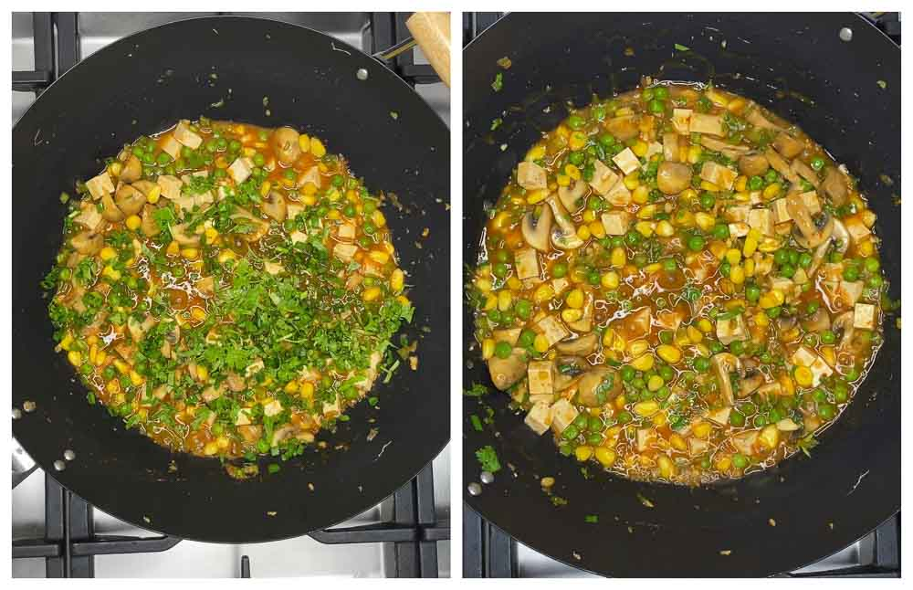 Carrot-Cabbage-Rice-and-Tofu-with-Veggies-17