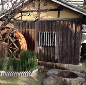 Kiku Masamune Gardens