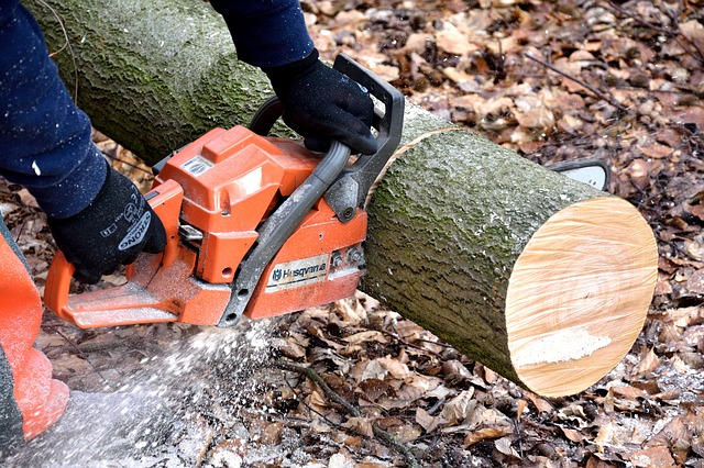 Tree Chipping Service