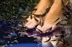 kapadokya çamur banyosu (3)