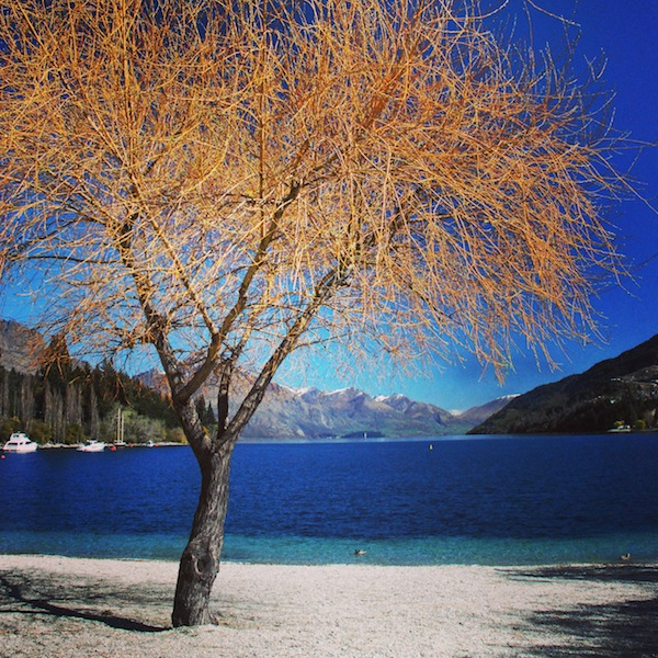 On the edge of Lake Wakatipu, Queenstown, New Zealand