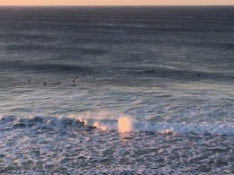 Surfers surfing at Bells Beach, Torquay, Great Ocean Road