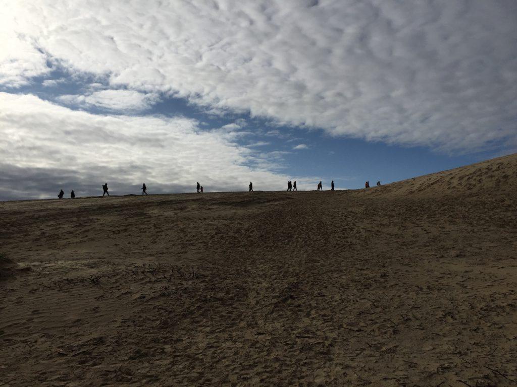 Auf dem Weg zum Rubjerg Knude Fyr (c) Sibille Fuhrken