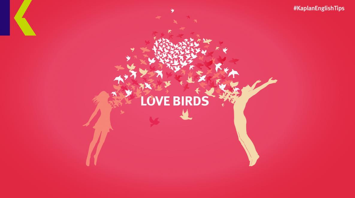 متعمد قطاع الممر معنى كلمة احبك بالانجليزي Comertinsaat Com