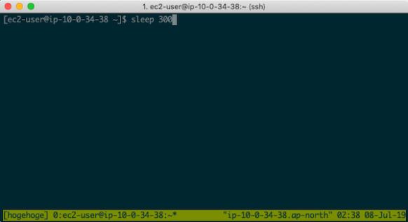 tmuxを使ってSSHの接続が切れてもコマンドを動かし続ける – karakaram-blog