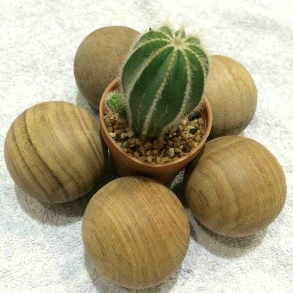 Handcrafted WOOD SPHERE(Wood Ball), Home, Garden, Pot, Decor, Jewellery Display Stand, TEAK, 30-110-mm or 1-4-inch Diameter