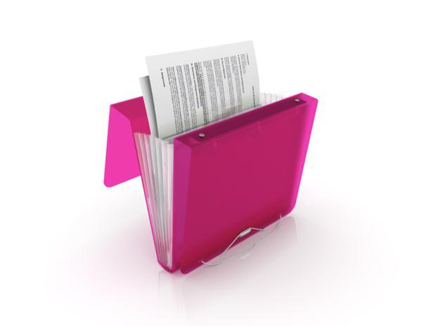 Karas Party Ideas Duo Binder Organizer Folder 3 Ring
