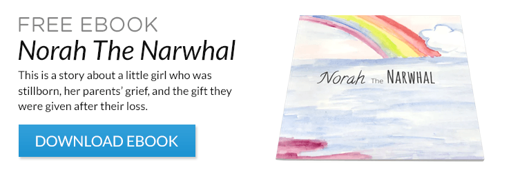 Norah The Narwhal free ebook