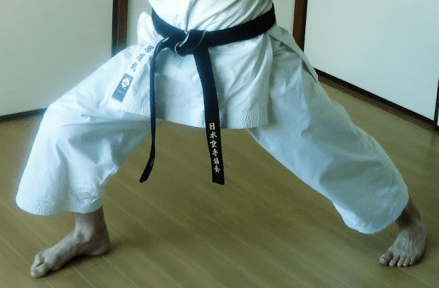 The Purpose Of Karate Stances Karate Obsession