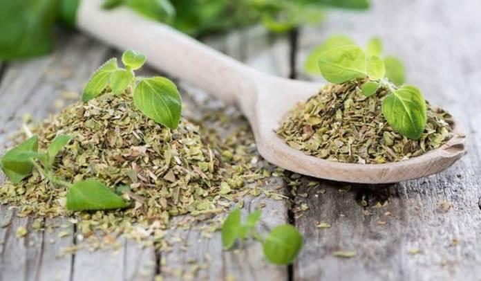 أعشاب لتنظيم الهرمونات طبيعيا دون مواد كيماوية مجلة كرز صحة ورشاقة