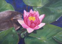 Waterlily Perfection - Acrylic - 25 x 25 cms
