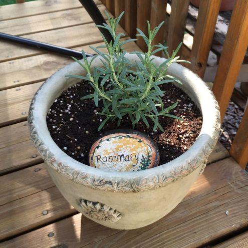 How to plant an herb garden. At karenehman.com