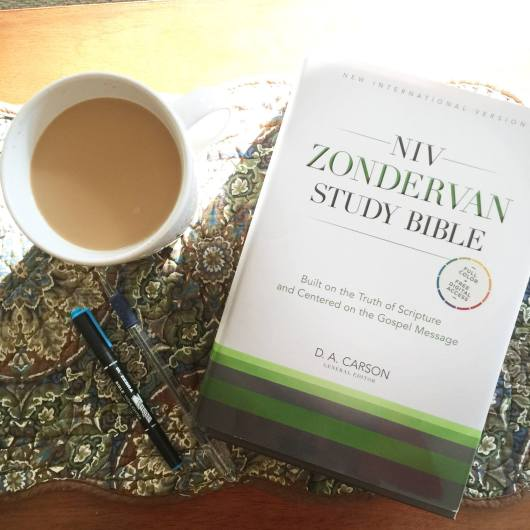 WIn the new NIV ZOndervan Study Bible at karenehman.com