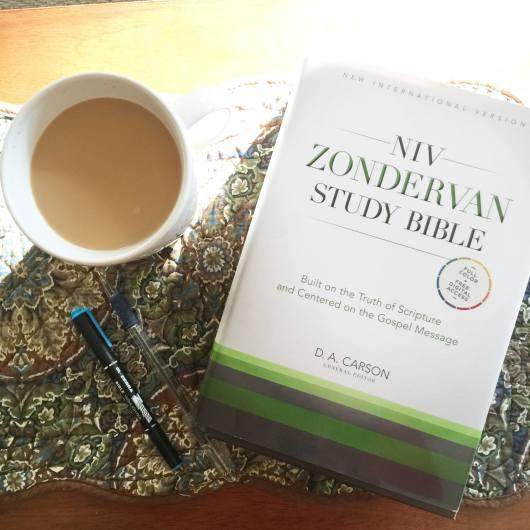 WIn the new NIV ZOndervan Study Bible at karenehman.com