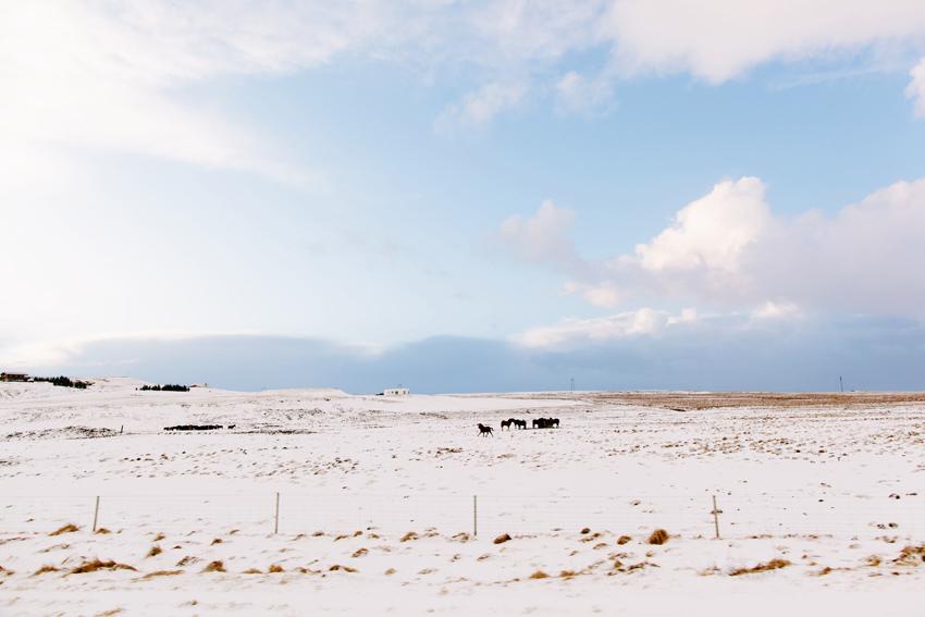 031_icelandweddingphotographer_karenobristphotography