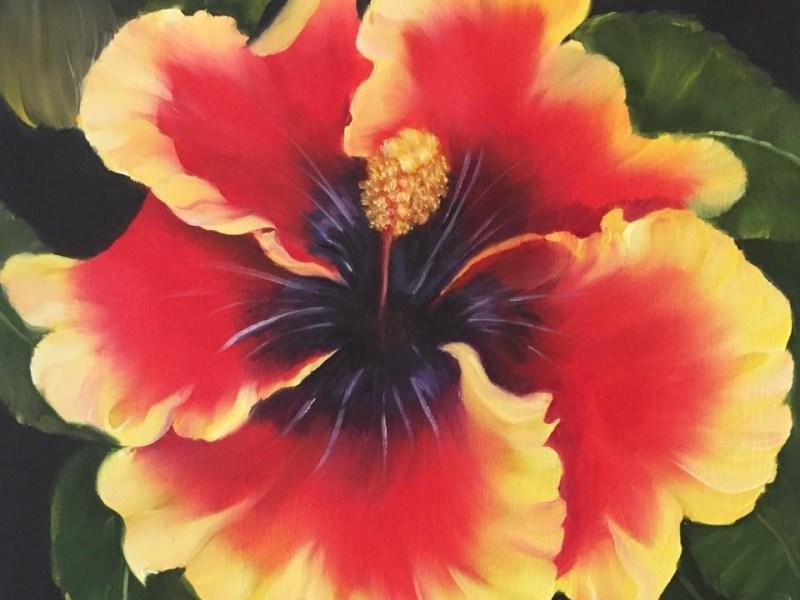 Large Hibiscus