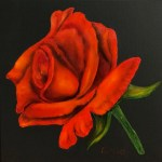 Red Rose - Karen Underwood