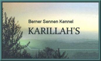 Logo_KARILLAHS