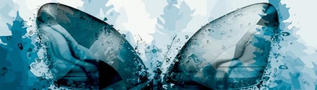 Image décorative : papillon stylisé sur un fond de forêt de sapins également sylisés.
