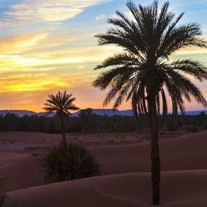 Coucher de soleil- désert marocain