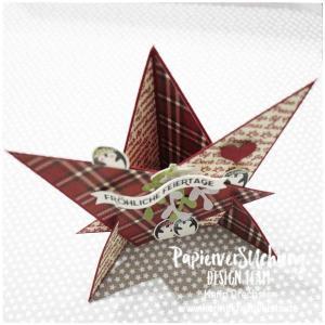 Sternenkarte Leuchtende Weihnachten Karins Kreativkiste fertig von oben WZ