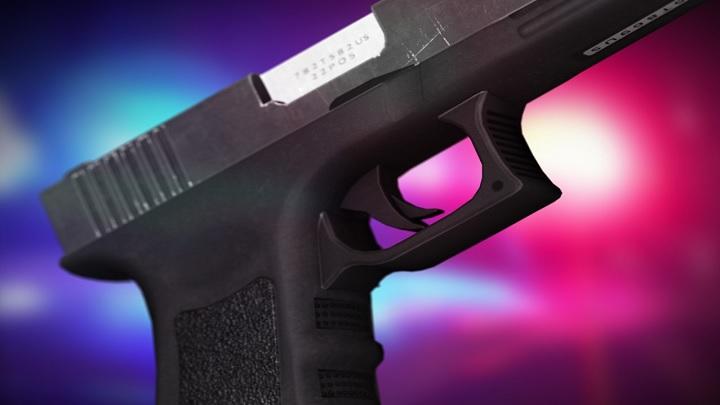 Gun generic_1532738282878.jpg-118809318.jpg