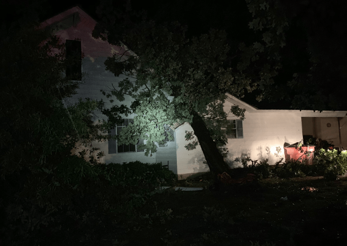 Tree down in Harrell - Calhoun County June 19 - photo by Jacob Cain__1561005088996.PNG.jpg