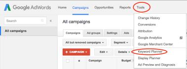 Google keyword option