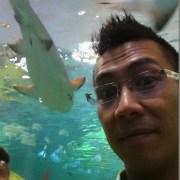shark!!